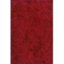 Zalakerámia Kapri ZBR 330 falicsempe 20 x 30 cm