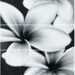 Opoczno Pret a Porter Flower Composition 3 részes dekorcsempe 75x75 cm