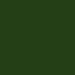Ape Lord Kingdom Verde Botella padlólap 20 x 20 cm