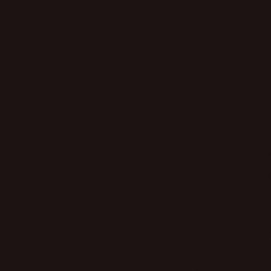 Ape Colors Negro Mate falicsempe 20 x 20 cm