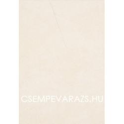 Arte Grafite 2 fehér falicsempe 25 x 36 cm