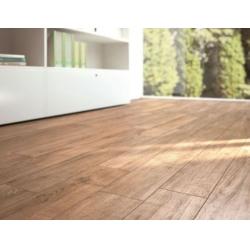 Ragno Wood 01