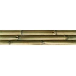 Mijares Albufera Verde falburkolat 10 x 50 cm