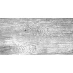 Marconi UG300x600-1-Foresta GR falicsempe 30 x 60 cm