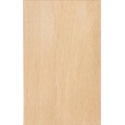 Zalakerámia Legno ZBD 42036 falicsempe 25 x 40 cm